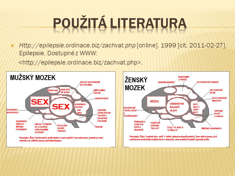 Použitá literatura Http://epilepsie.ordinace.biz/zachvat.php [online]. 1999 [cit. 2011-02-27]. Epilepsie. Dostupné z WWW: